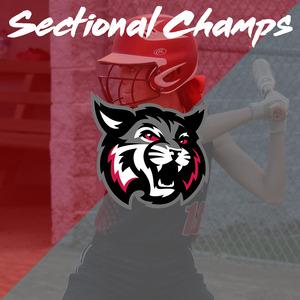 Softball-Sectional